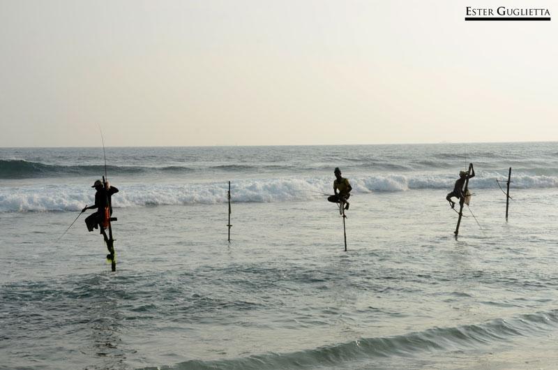 Itineraio Sri Lanka