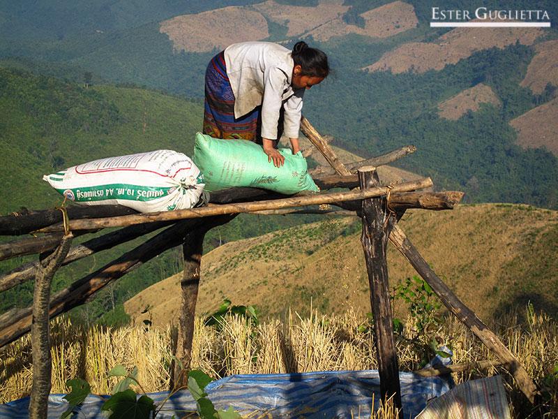 Itinerario Laos 2010