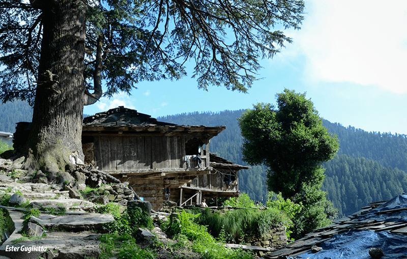 Jana, Himachal Pradesh